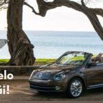 Conduce un VW Beetle Cabrio en Hawaii